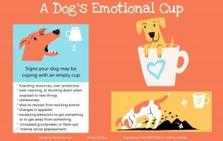 """Image for the article """"A Dog's Emotional Cup"""""""